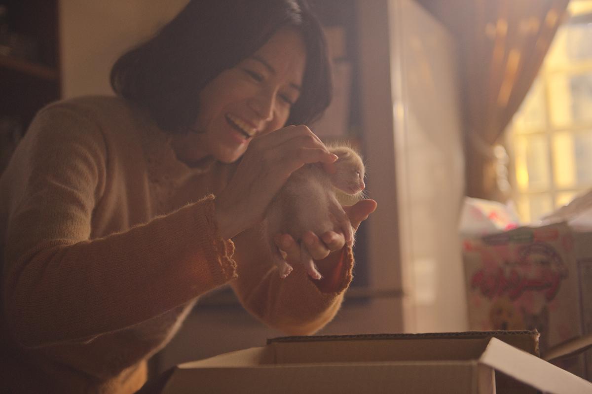 華視金選劇場 - 衣櫃裡的貓 精彩劇照
